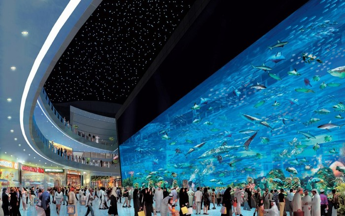 Dubai Mall sở hữu bể cá lớn nhất thế giới.