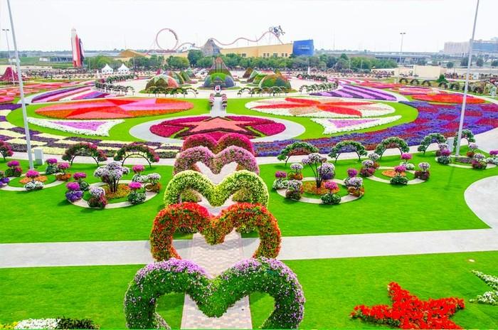 Dubai Miracle Garden là vườn hoa lớn nhất thế giới.