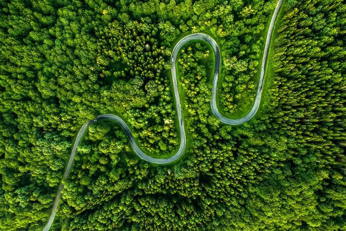 Con đường lượn sóng được bao quanh bởi màu xanh tươi mát của vùng núi Bieszczady, Ba Lan.
