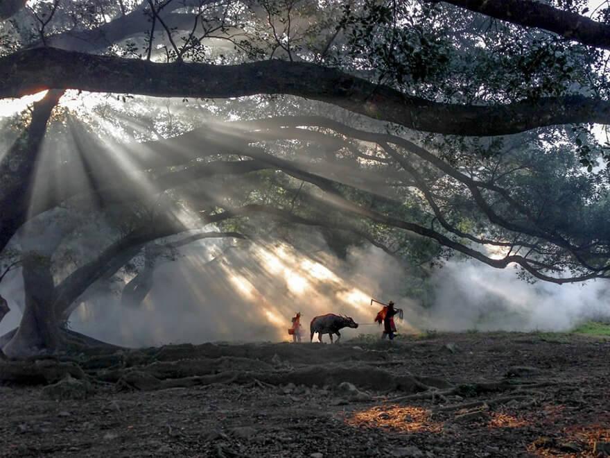 Có ai ngờ bức ảnh xuất sắc này lại được chụp bằng iPhone chứ? Giải nhất chủ đề Du lịch thuộc về Fugen Xiao đến từ Quảng Đông, Trung Quốc.
