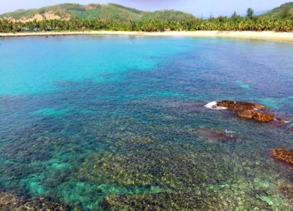 Nước biển trong vắt thấy rõ cả những rặng san hô