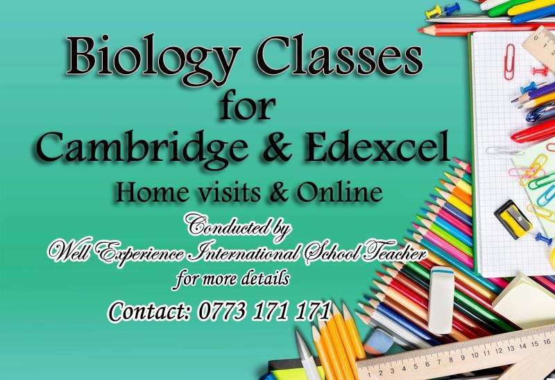 Online & Home visiting Biology Classes