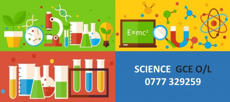 Science - GCE O/L (Sinhala / English)