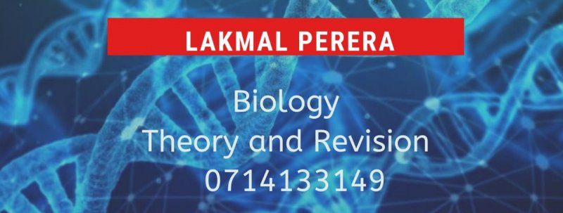 G.C.E. Advanced Level Biology tuition ( theory and revision)
