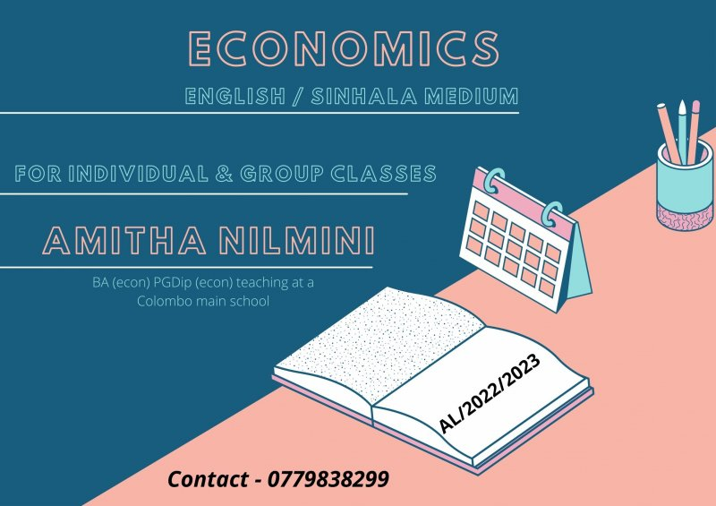 Economics for AL by a well experienced teacher for a reasonable price