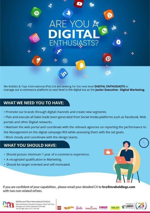 Junior Executive- Digital Marketing