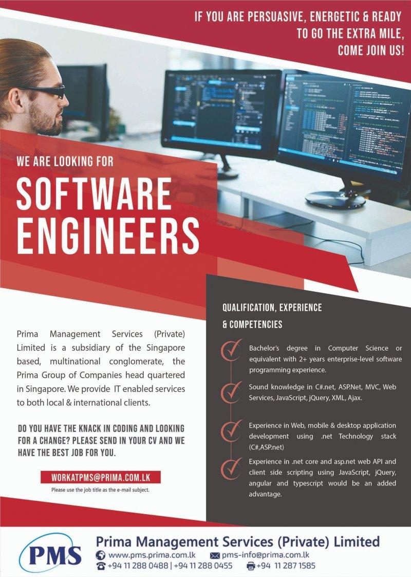 Software Engineers