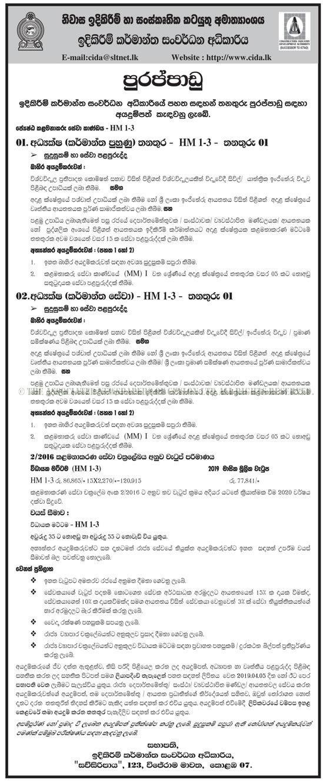 Director - Construction Industry Development Authority
