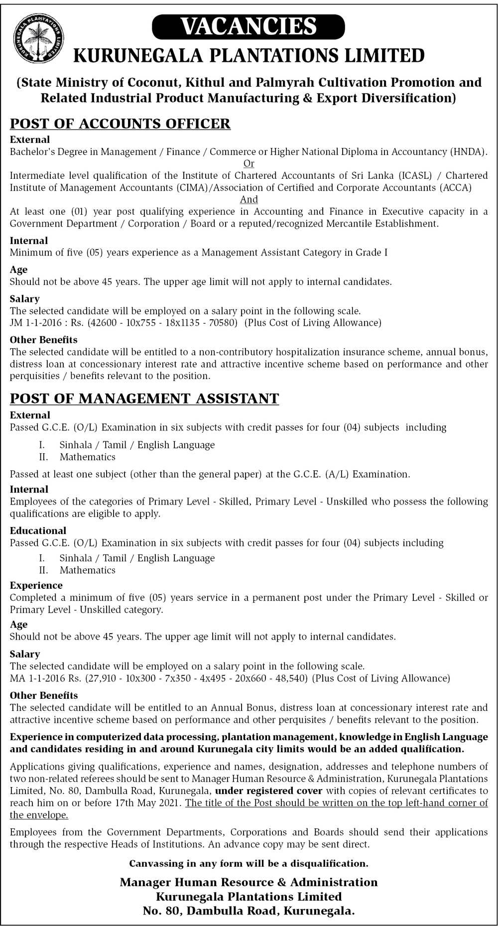 Management Assistant, Accounts Officer - Kurunegala Plantation Limited