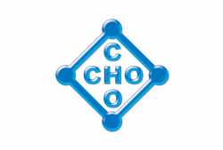 Sales Supervisor  at Cho Cho Co., Ltd. | New Day Jobs (Yangon, Myanmar)