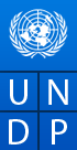 National Consultant Launch and Management of UN Women Programme in Kachin on COVID-19 Response at United Nations Development Program | New Day Jobs (Yangon, Myanmar)