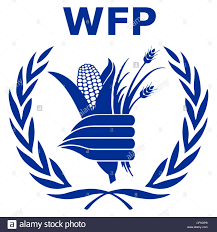 Programme Associate (Information Management) SC6 at UN WFP - World Food Programme | New Day Jobs (Yangon, Myanmar)