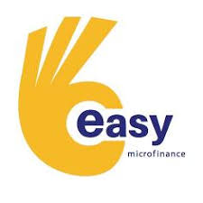 Internal Auditor at Easy microfinance | New Day Jobs (Yangon, Myanmar)