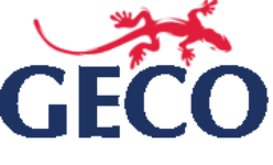 SAP CPM Process Consultant [Full Time - Remote] at Geco Asia Pte Ltd   New Day Jobs (Yangon, Myanmar)
