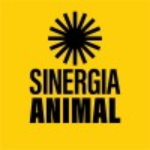 Corporate Engagement Manager - Thailand at Sinergia Animal | New Day Jobs (Yangon, Myanmar)