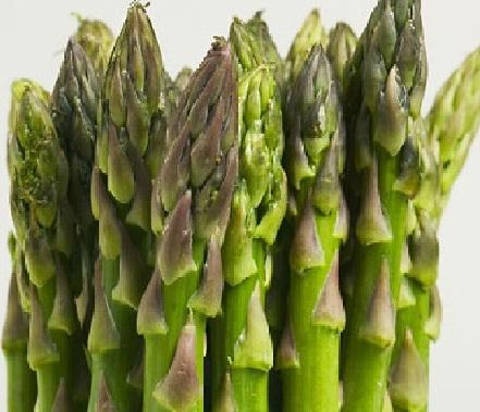 13 Cara Menanam Asparagus dari Biji (Panduan Lengkap)