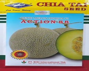 5 Jenis Benih Melon Terbaik dan Tahan Penyakit