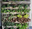 Cara Berkebun di Lahan Sempit dengan Vertical Garden