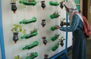 6 Cara Menanam Vertikultur Dengan Botol Bekas Untuk Tanaman
