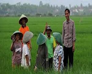 Inilah Cara Agar Petani Indonesia Lebih Sejahtera dan Makmur
