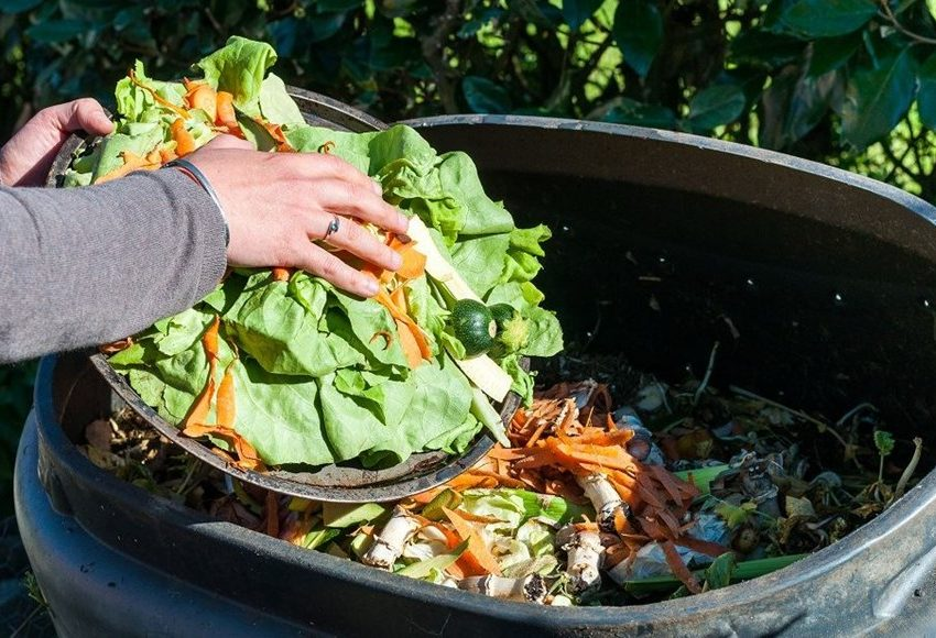 4 Cara Membuat Pupuk Organik Dari Limbah Sampah Rumah Tangga