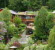 10 Manfaat Menanam Tumbuhan di Sekitar Rumah dan Lingkungan