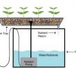 Media Tanam Untuk Hidroponik Substrat yang Paling Cocok