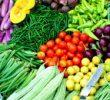Jenis Tanah yang Cocok untuk Hortikultura dan Cara Menanam