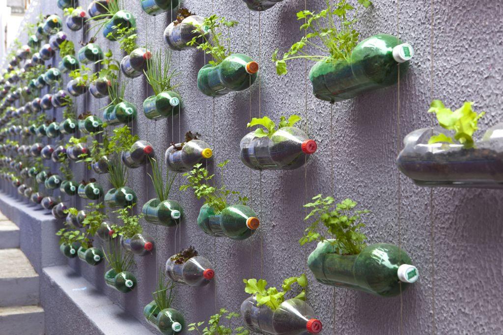 Cara Membuat Vertical Garden dari Botol Bekas yang Mudah dan Praktis