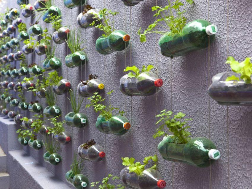 Cara Membuat dan Merawat Vertical Garden dari Botol Bekas yang Mudah dan Praktis
