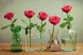 Apa Saja Bahan Pengawet Bunga Kering dan Bagaimana Caranya?