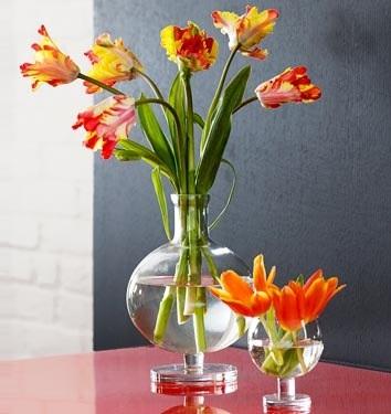 Inilah 5 Cara Merawat Bunga yang Sudah Dipetik Agar Tidak Layu