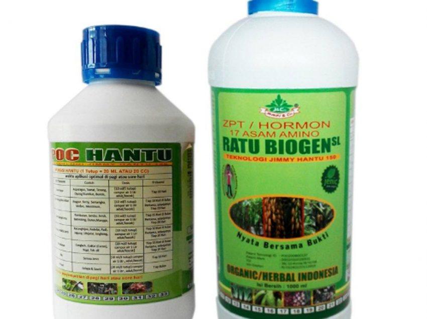 Kegunaan Pupuk Hantu Ratu Biogen dan Cara Menggunakannya