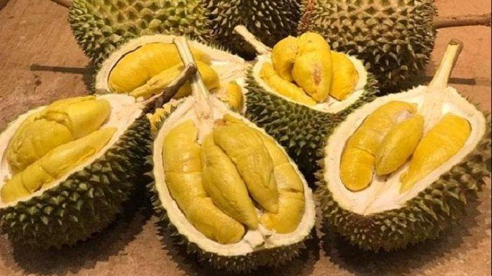 Cara Memupuk Durian dengan Pupuk Nasa dan Perawatan Pohon