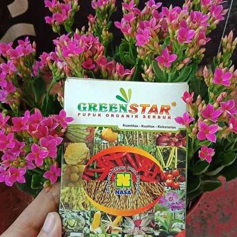 Kegunaan Pupuk Greenstar dan Cara Menggunakannya