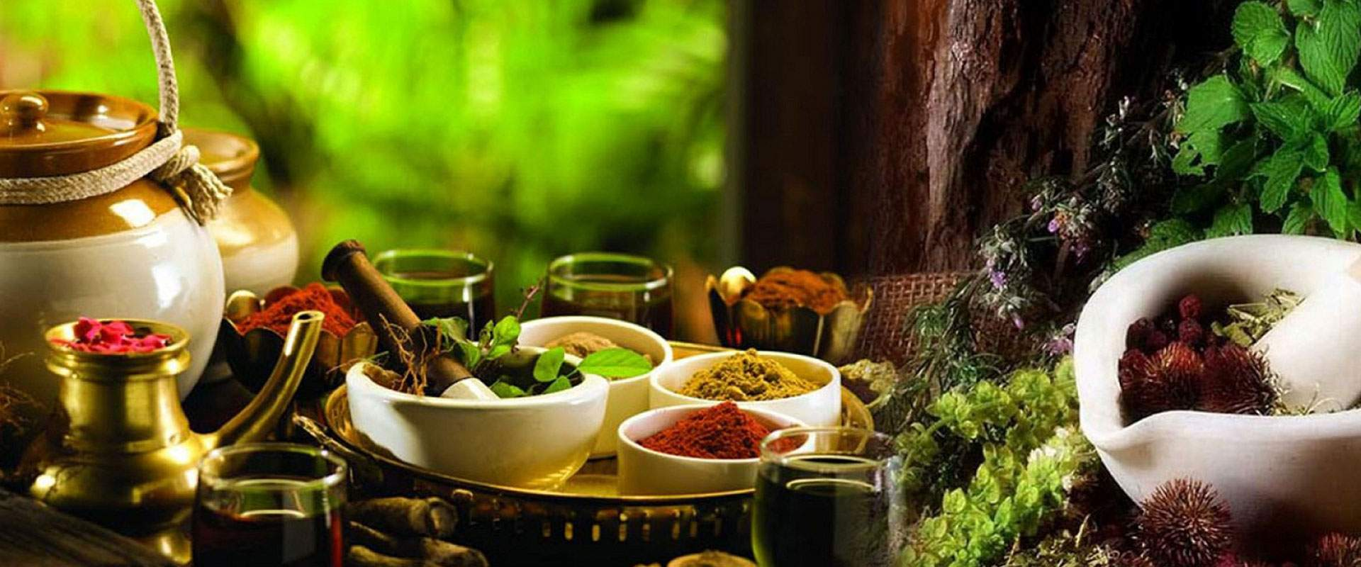 Ayurvedic Medicine Images