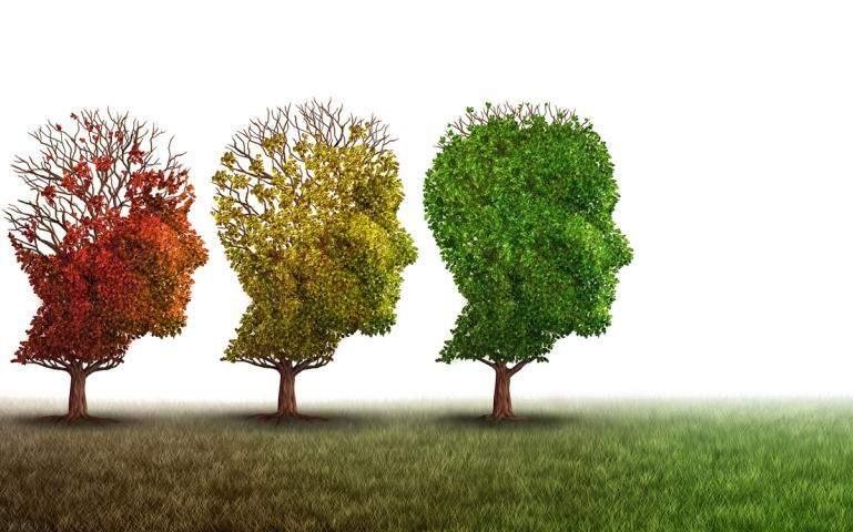 improve your mental wellness