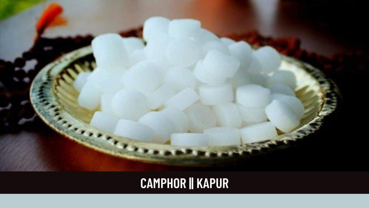 Camphor : Health Benefits, Uses, Dosage and Side Effects