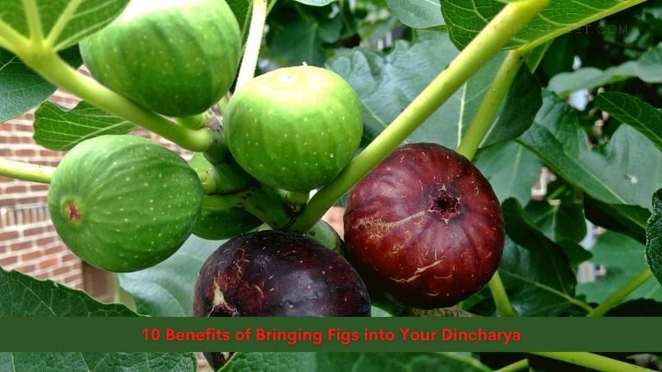 10 Benefits of Bringing Figs into Your Dincharya
