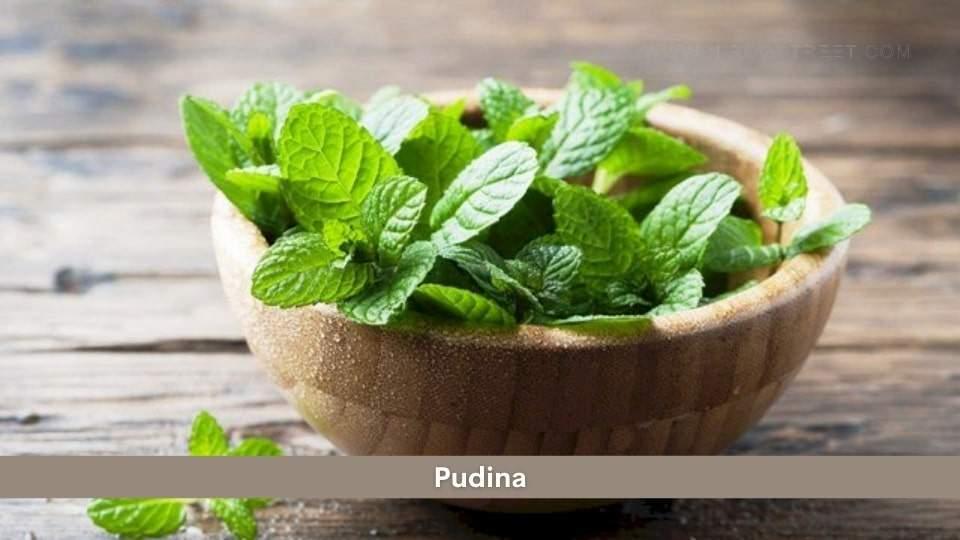 Pudina Health Benefits