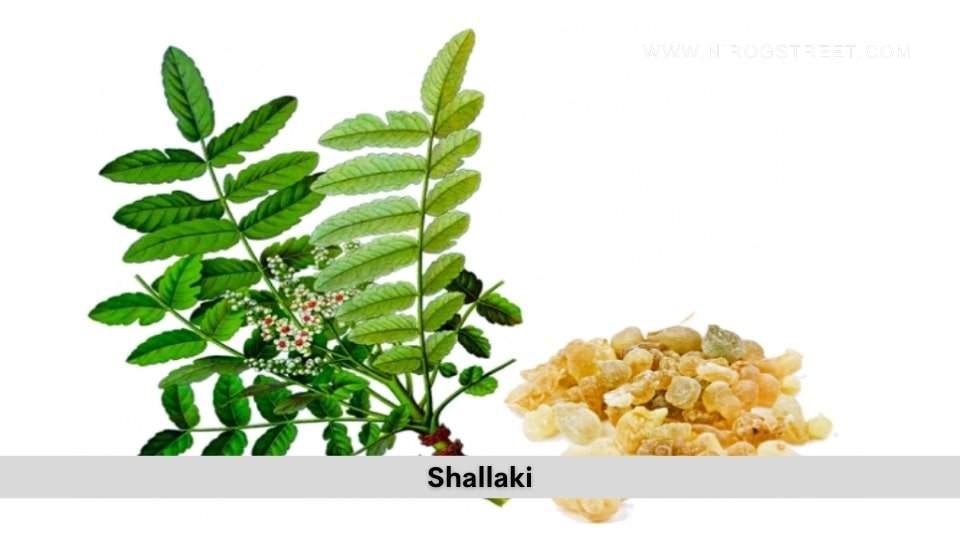 Shallaki Health Benefits