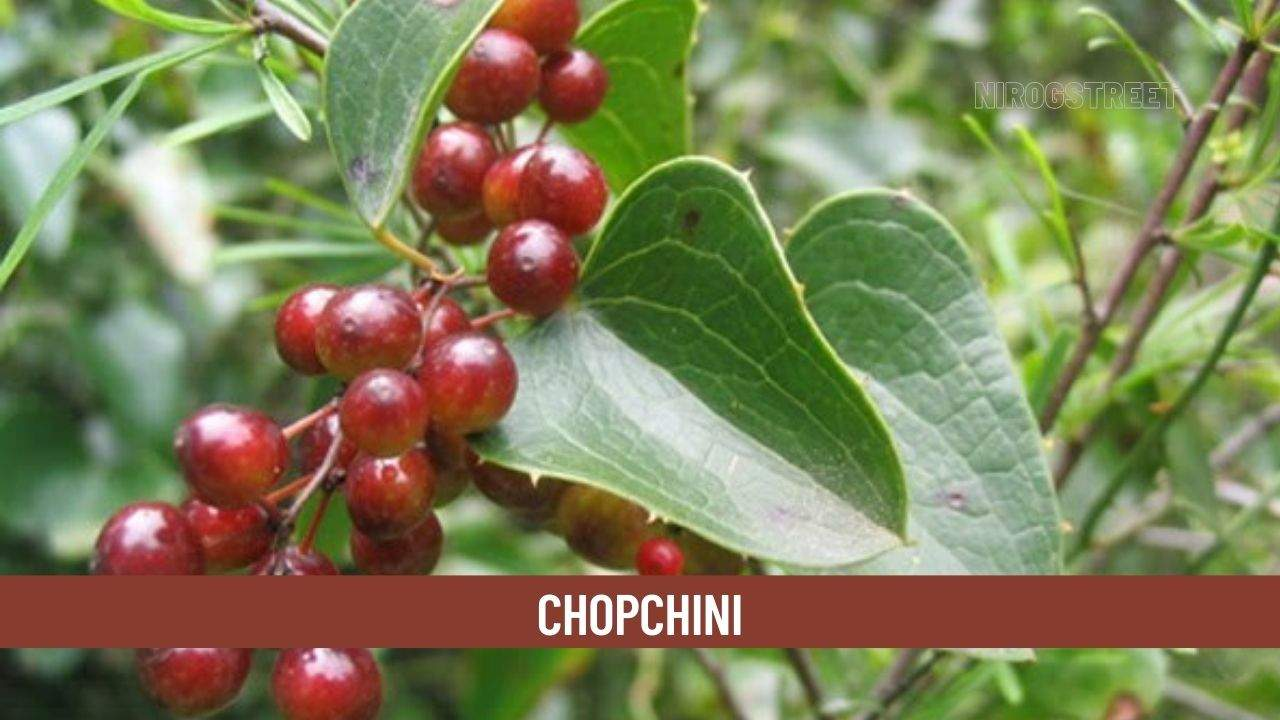 Chopchini