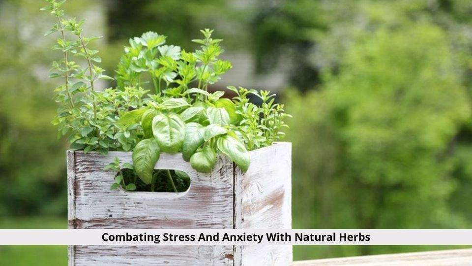 Combating Stress And Anxiety