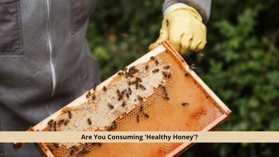 Consuming Healthy Honey