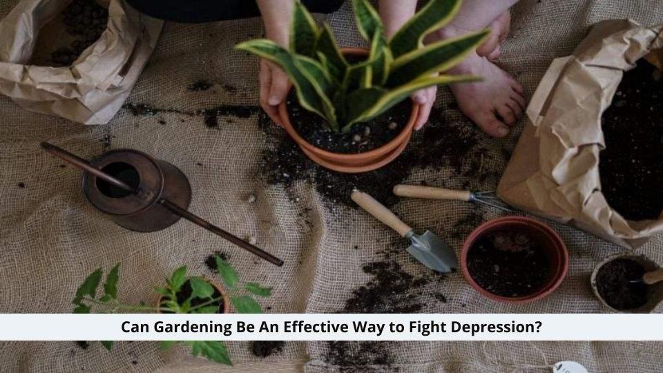 Way to Fight Depression