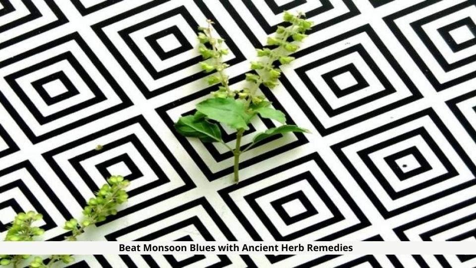 Ancient Herb Remedies