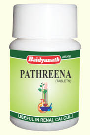 Baidyanath - Pathreena