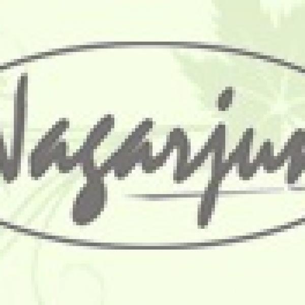 Nagarjuna (Gujrat) - Pushyanug Tablet