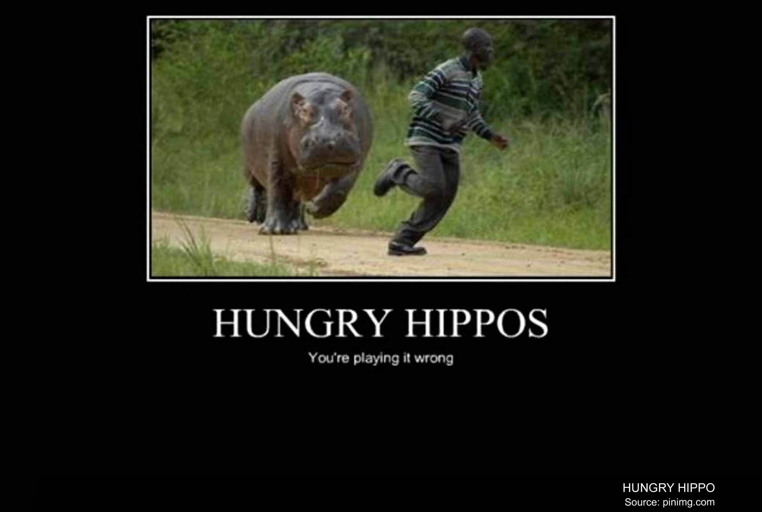 Human Hungry Hippo