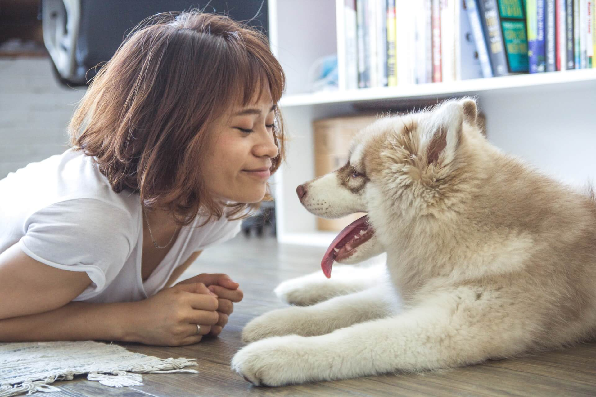 4 Resons to Stay on a Low Floor HDB Flat Pet-Friendly